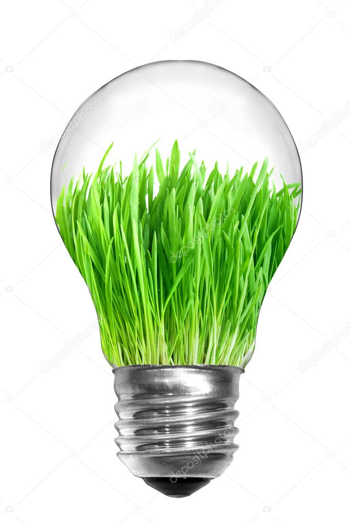 Natural energy concept. Light bulb with green grass inside isolated on white — Stock Photo #1362836