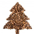 Fir-tree from coffee beans — Foto de Stock