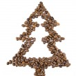 Fir-tree from coffee beans — Stock Photo