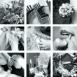 Black and white wedding photos — Stock Photo