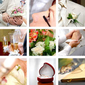 Color wedding photos set — 图库照片