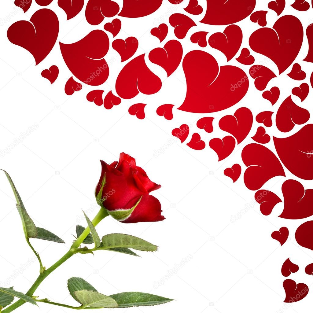 Red rose and hearts for lovers  Stock Photo #1384175