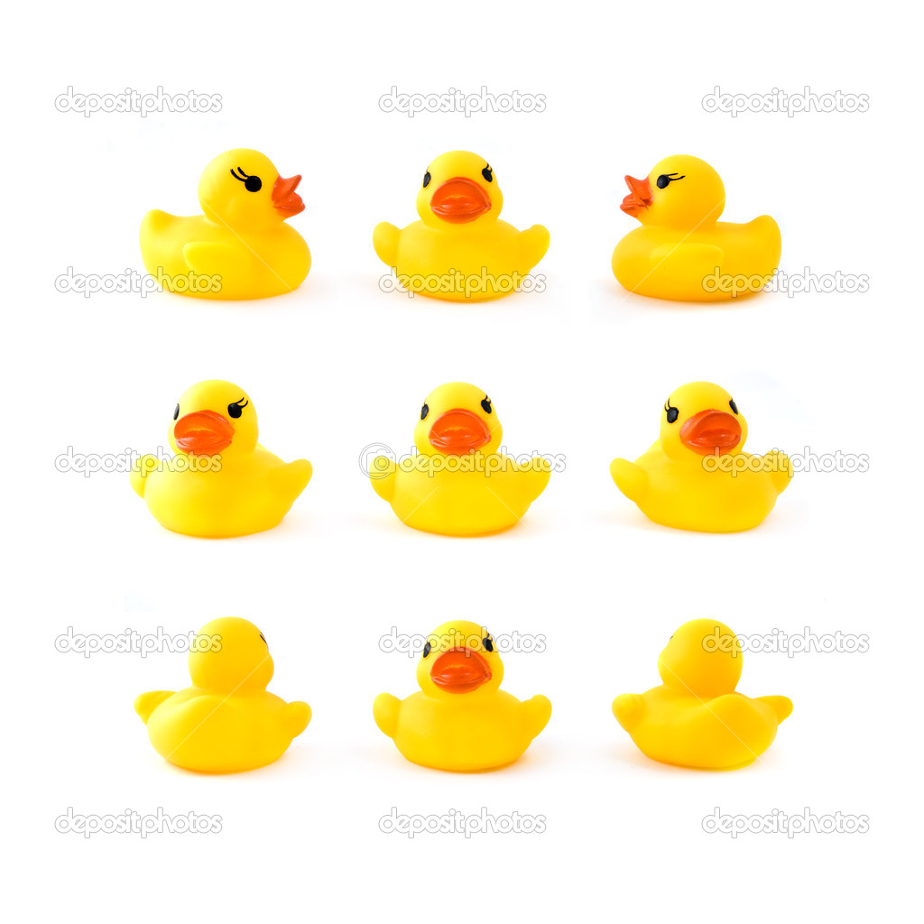 Rubber yellow ducks isolated on white  Stock Photo #1387671