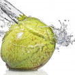 Coconut with water splash — Stock Photo