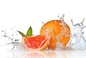 Water splash on grapefruit with mint — Стоковое фото