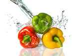 Pepper with water splash — Stock Photo