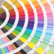 Stock Photo: Color guide