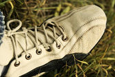 Old sneakers on the grass — Stock Photo
