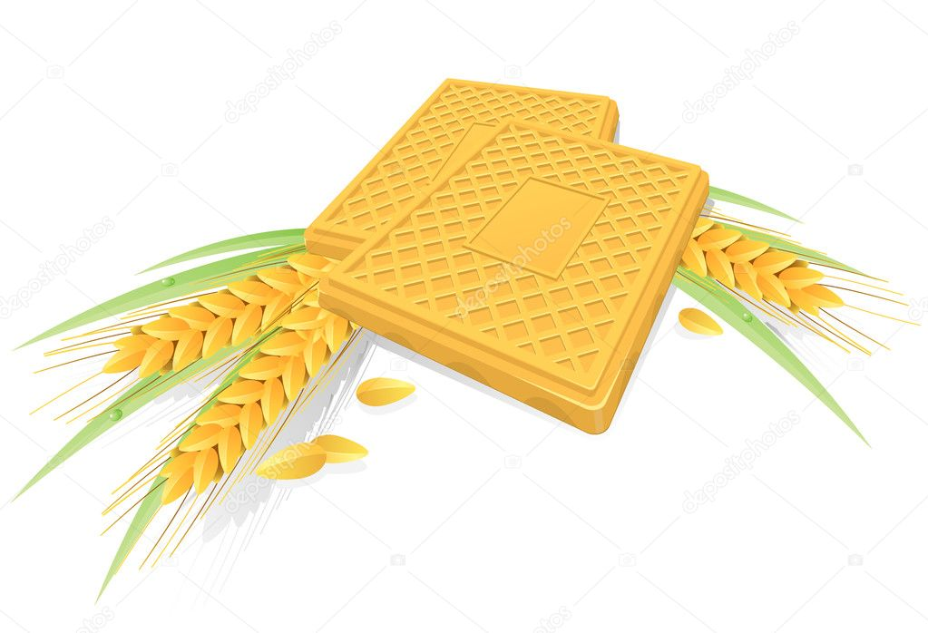 Tasty biscuits with ears of wheat and grass — Stock Vector #1926775