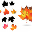Royalty-Free Stock Vector Image: Set of Maple leaves and silhouettes