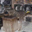 Oven for incineration in Auschwitz — Stock Photo