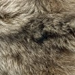Background - beautiful fur of polar Fox — Stock Photo #1367243
