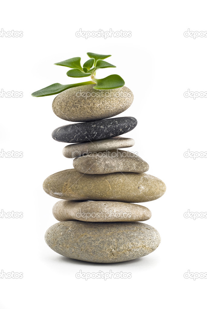 Green Life - balanced stone tower with plant on the top over white  Stock Photo #1374145