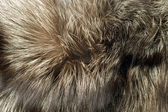 Fox fur Useful as background — Stock Photo
