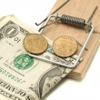 Catch it - money in the mousetrap — Stock Photo