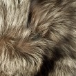 Texture - Beautiful polar Fox fur - Stock Photo