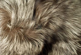 Texture - Beautiful polar Fox fur — Stock Photo