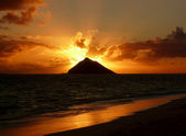 Tropical sunrise at Lanikai Beach. — Foto de Stock