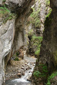Narrow canyon in the Alps — Stock Photo