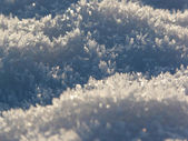 Snow crystals in the sun — Stock Photo