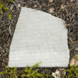 Slate piece on a ground — Stock Photo