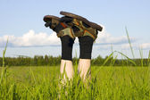 In the field — Stock Photo