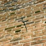 Brick wall — Stock Photo #1477796