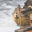 Storm in Camogli — Stock Photo