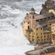 Storm in Camogli - Photo