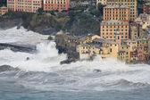 Sea storm in Camogli — Stock Photo