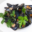 Mussels with parsley closeup - Stock Photo