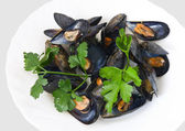 Mussels with parsley closeup — Stock Photo