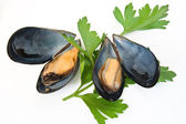 Two mussel with and parsley — Stock Photo