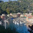 Aerial view of Portofino, famous small town in Italy near Genoa. — Stock Photo #1429157