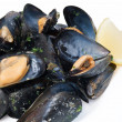 Cooked mussels closeup - Stock Photo