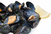 Cooked mussels closeup — Stock Photo