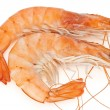 Royalty-Free Stock Photo: Two shrimps