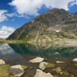Lago Piccolo, Val di Sole — Stock Photo