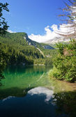 Tovel lake, Trentino, Italy — Stock Photo