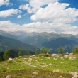 Val di Sole — Stock Photo