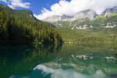 Lago tovel, i̇talya — Stok fotoğraf