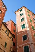 Camogli's houses — Stock Photo