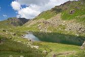Lusia lake — Stock Photo