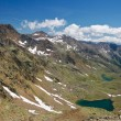 Стоковое фото: Alpine landscape in summer