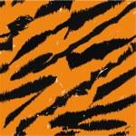 Tiger ränder — Stockfoto