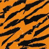 Tiger stripes — Stock Photo
