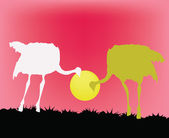 Two ostriches — Stock Vector