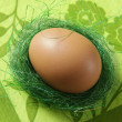 Stock Photo: Brown egg