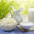 Fresh milk products - Stock Photo