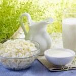Fresh milk products — Stock Photo